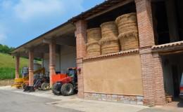 Agriturismo casinetto serle – azienda agricola (7)