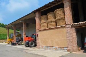 Agriturismo casinetto serle - azienda agricola (7)